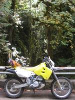 2005 DRZ400e
